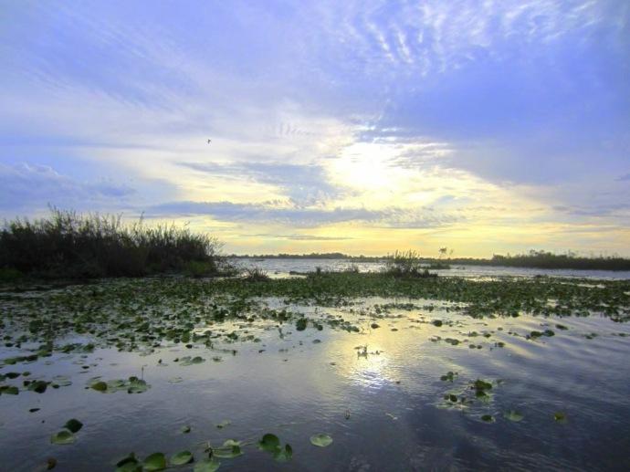 Hai Departe Argentina Esteros del Ibera (1)