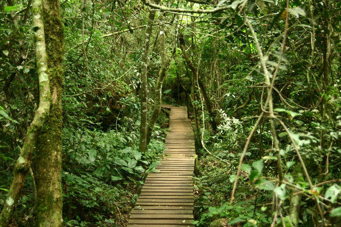 Hai Departe Iguazu (14)