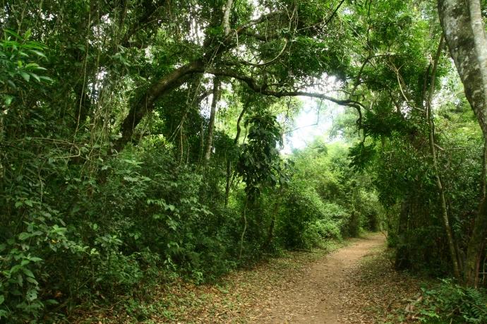 Hai Departe Iguazu (16)