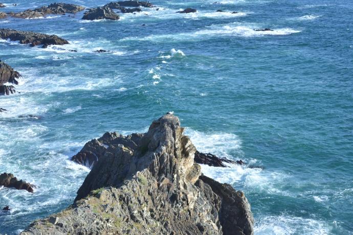 Hai Departe Portugalia Cabo Sardao (1)