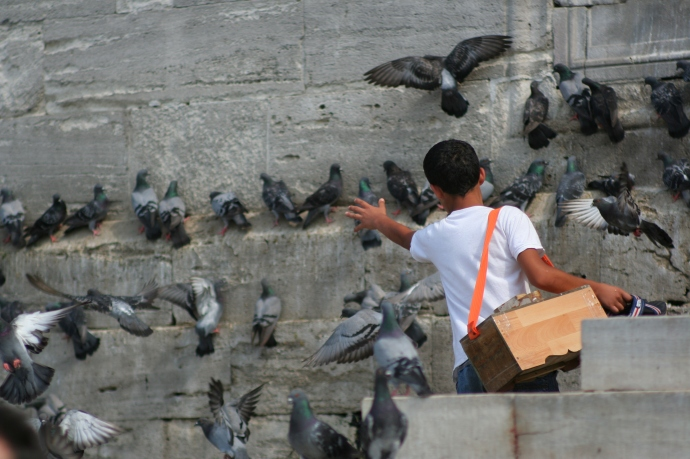 Hai Departe Turcia Istanbul (5)