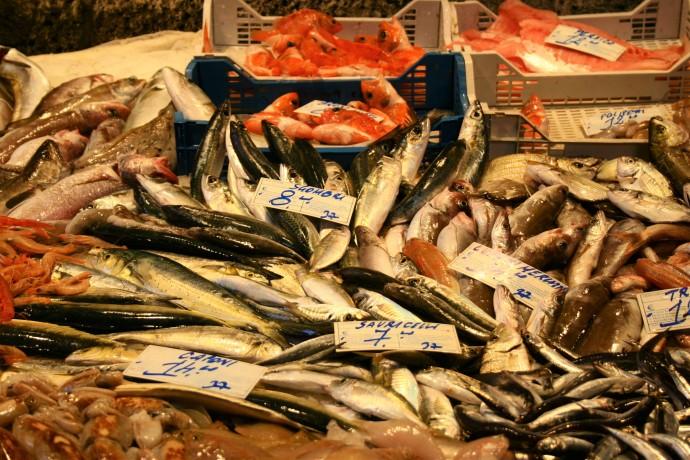 Hai Departe Sicilia Catania Piata de peste (5)