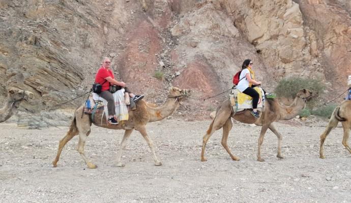 Hai Departe Eilat Israel (13)