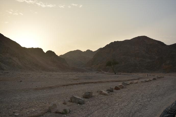 Hai Departe Eilat Israel (7)