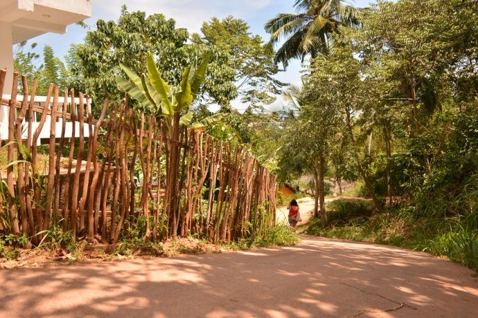 Hai Departe Sri Lanka Mirissa (10)