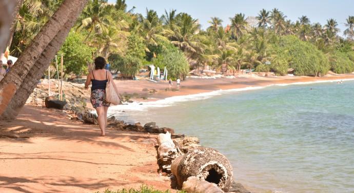 Hai Departe Sri Lanka Mirissa (5)