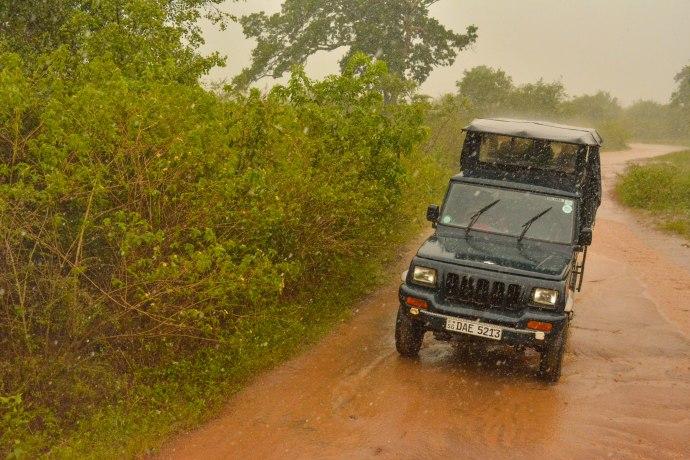 Hai Departe Sri Lanka Udawalawe (6)
