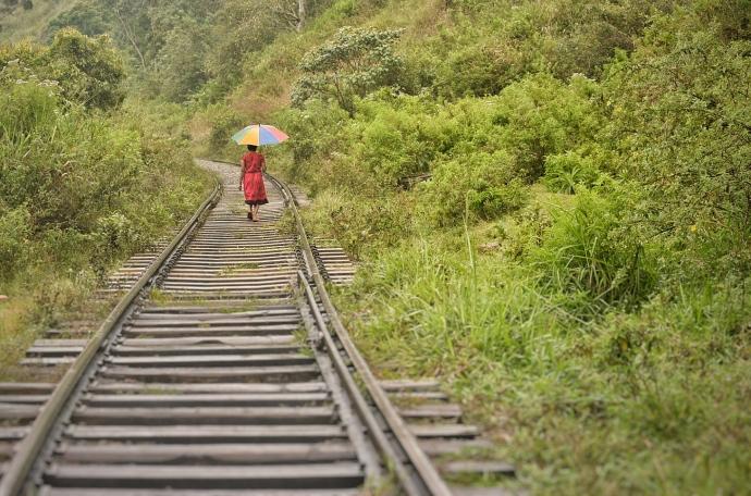 Hai Departe Ella Nanu Oya Nuwara Eliya (2)