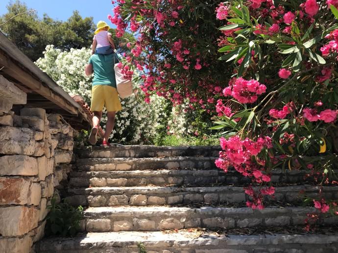 Hai Departe Zakynthos (5)