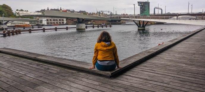 Hai Departe Copenhaga (3)