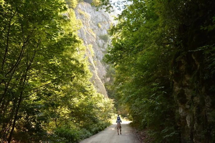 Hai Departe Wolkendorf Vulcan (21)